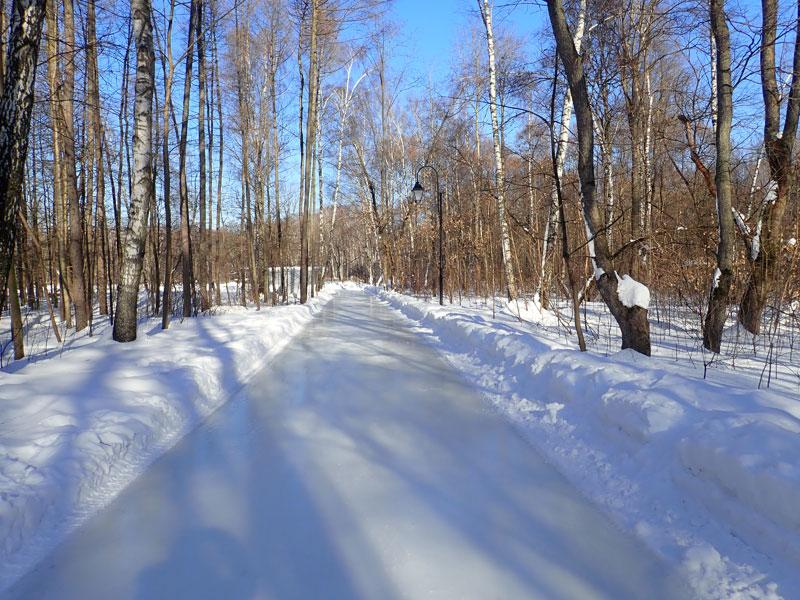 каток Сказка в лесу в Сокольниках