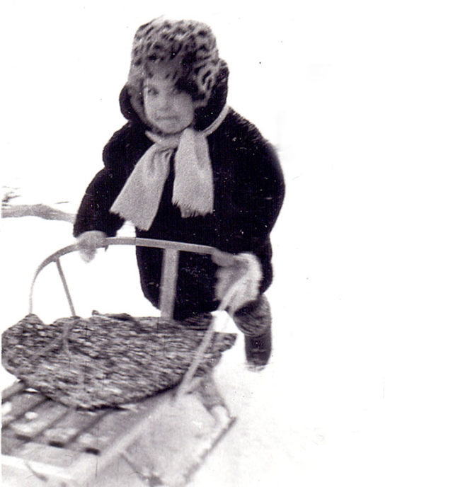 санки 70х - 90-х годов
