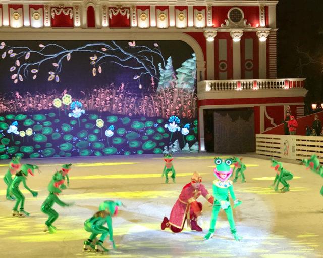 Ледовое шоу в Новопушкинском